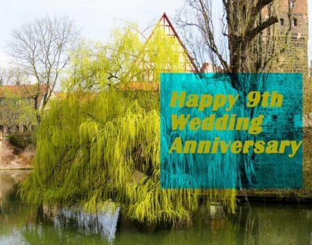 9th Wedding Anniversary Gift Ideas For Him